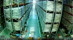 How Did This Warehouse Collapse? (& How to Avoid It)